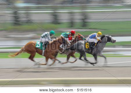 Excesso de velocidade de cavalos de corrida