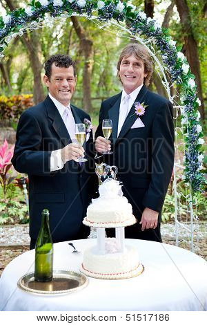 Handsome gay couple toasting with champagne at their beautiful outdoor wedding reception.