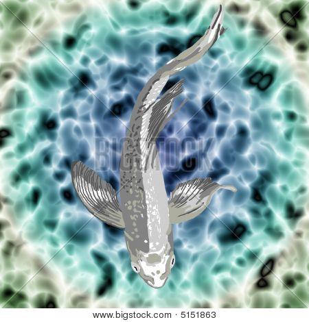 Silver Butterfly Koi