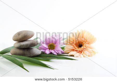 Flowers And Stones - Spa Theme