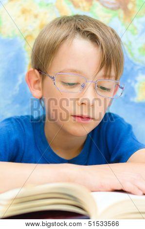 Schoolboy Reading