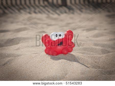 Happy Beach Crab