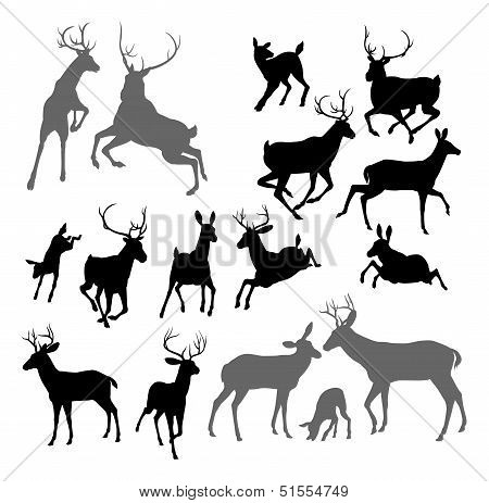 Deer Animal Silhouettes