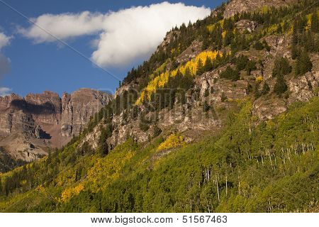 High Mountain Aspens
