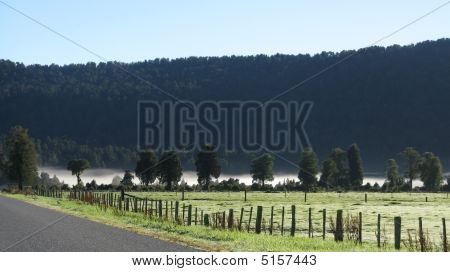 Misty View Near Lake Materson