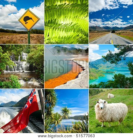 New Zealand set with Kiwi sign, fern and sheep