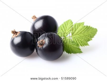 Ripe blackcurrant with leaf