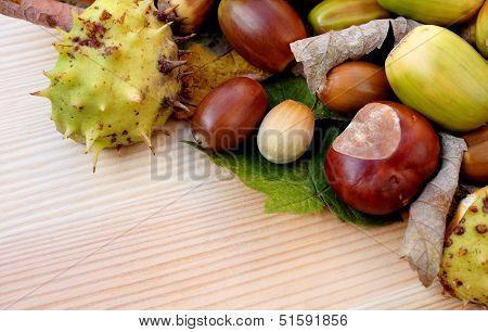Cobnuts, Horse Chestnuts, Acorns And Autumn Leaves Diagonal Border
