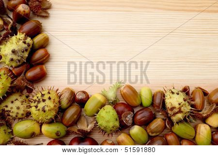 Two-sided Frame Of Natural Fall Material - Horse Chestnuts, Acorns, Cobnuts And Beechnuts
