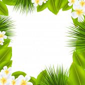 stock photo of frangipani  - Frame With Frangipani And Leaf With Gradient Mesh - JPG