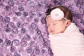 picture of rest-in-peace  - Beautiful newborn baby girl sleeping  - JPG