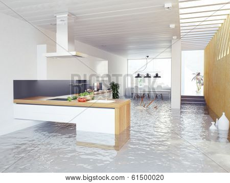 flooding kitchen modern interior (3D concept)