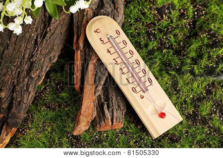 Thermometer on green grass background