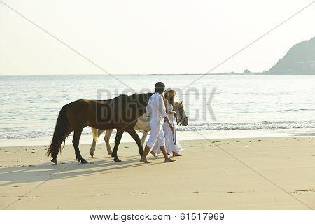 A Couple Walking Horses On Beach