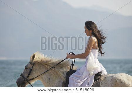 A Woman Riding Horse On Beach
