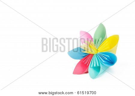 Paper Flower With Varicolored Petals