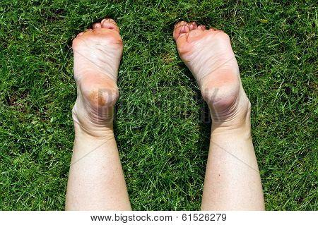 Farmer Woman Foots