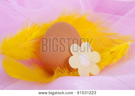 Chicken Egg Decorated For Easter