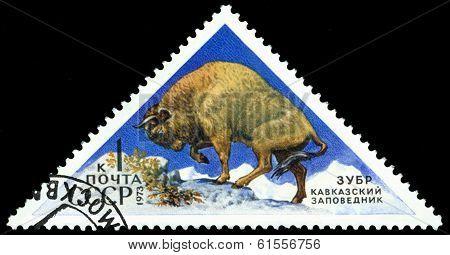 Vintage  Postage Stamp. Europian  Bison.