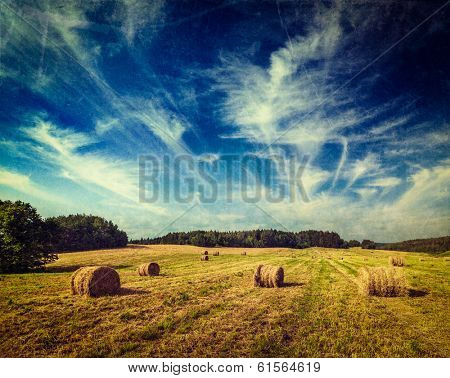 Vintage retro hipster style travel image of Agriculture background - Hay bales on field in summer with grunge texture overlaid
