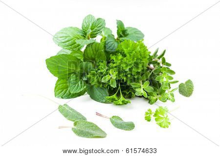 Variety of herbs from the garden.