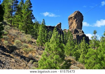 a view of Roque Nublo monolith in Gran Canaria, Spain
