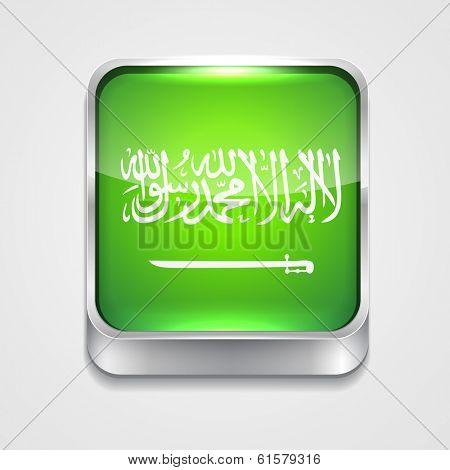 vector 3d style flag icon of saudi arabia