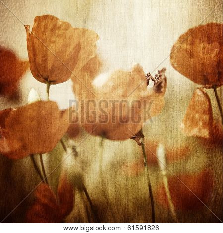 Grunge photo of beautiful red poppy flowers field, abstract floral pattern, vintage style image, natural wallpaper, fine art