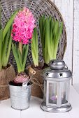 Houseplants in pots with decorative lantern on table on wicker background