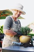 foto of plant pot  - Happy senior woman planting new plant in terracotta pot on a counter in backyard - JPG