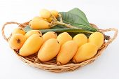 stock photo of loquat  - Fresh loquats with leaves in a basket