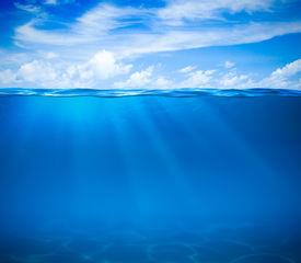 pic of algae  - Sea or ocean water surface and underwater - JPG