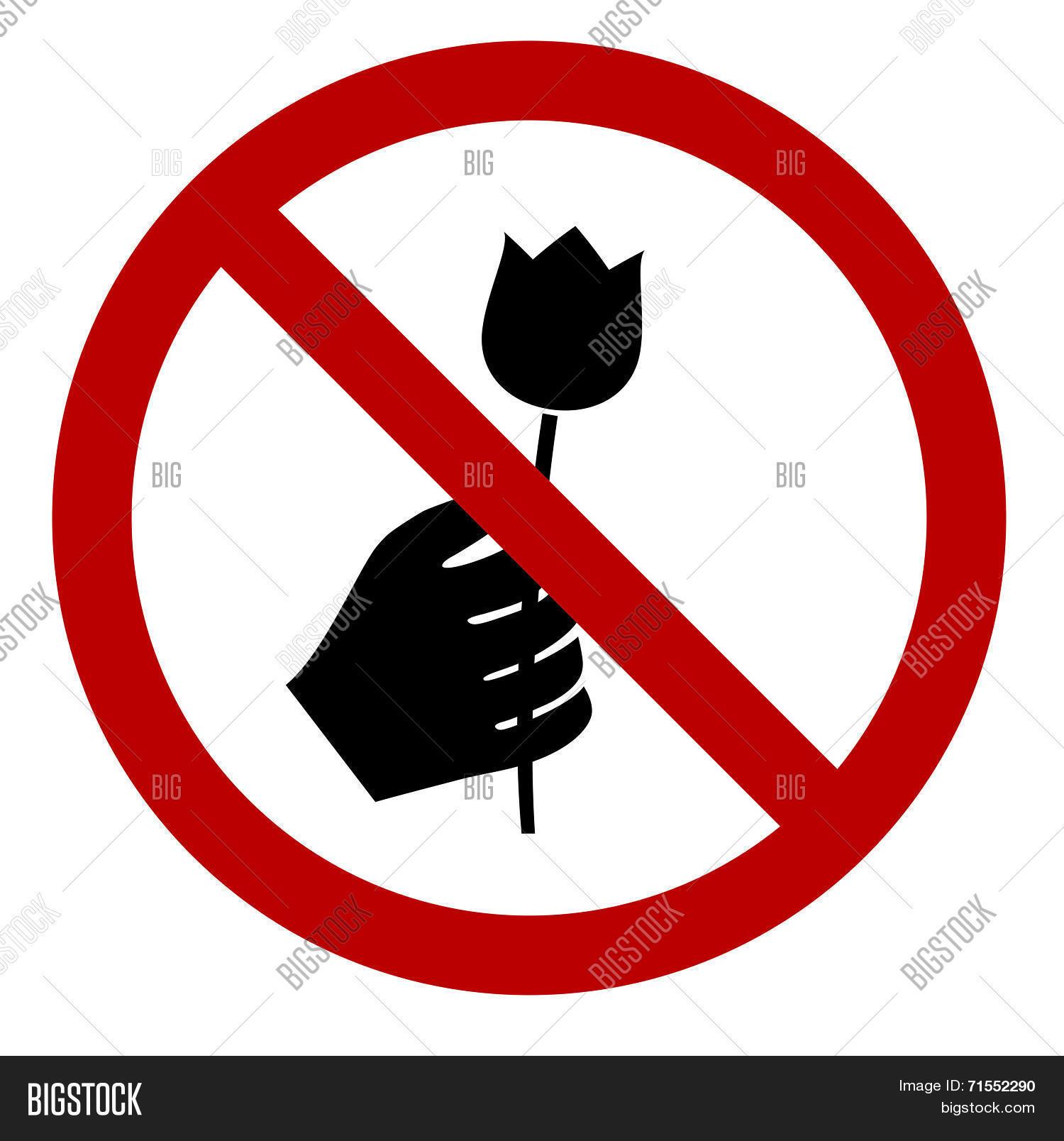 dont pick flower sign vector amp photo bigstock