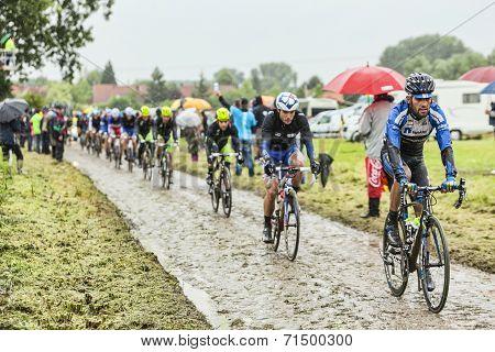 The Cyclist Jose Pimenta Costa Mendes On A Cobbled Road - Tour De France 2014