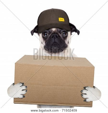 Dog Delivery Post