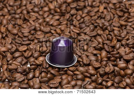 Seed Of Coffee With Capsule
