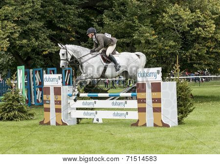 Dubarry Young Horse Event Winner