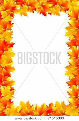 Frame Of Yellow Autumn Maple Leaves