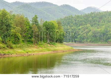 Lake Side Forest In Rainny Season.