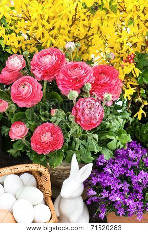 Beautiful Spring Flowers With Easter Decoration