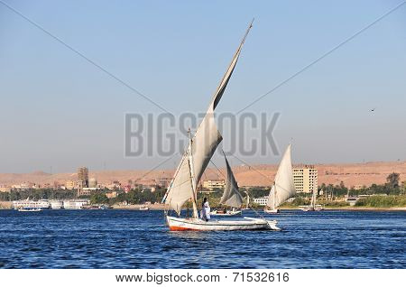 Egyptian Nubian On A Felucca