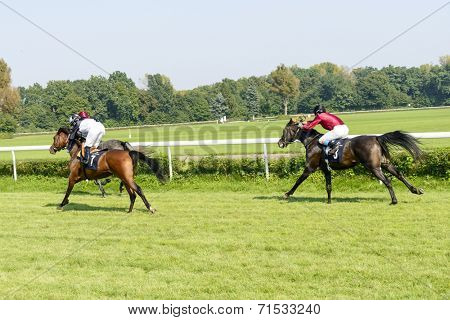 WROCLAW, POLAND - SEPTEMBER 6: Race for 3-year-old Arabian horse group II on 6 September 2014 in Wroclaw, Poland. In the photograph can be seen horses D'Achila no 7 and  Desert no 3.