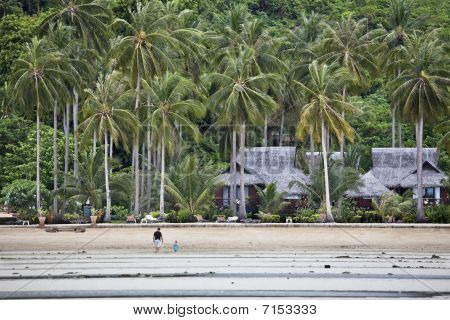Bungalows On A Tropical Beach.