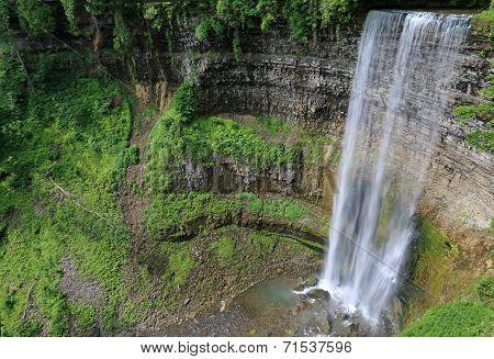 Tew's Falls Vista