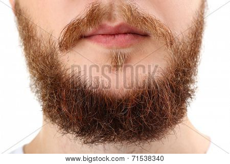Closeup of long beard and mustache man, isolated on white
