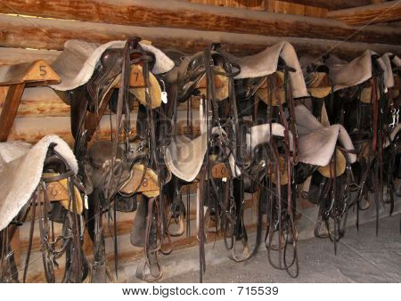 Saddles And Bridles 93