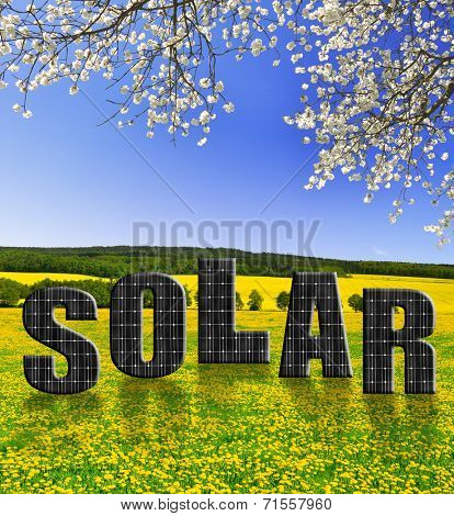 Solar energy panels in spring landscape. Green energy concept.