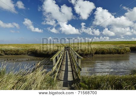 Westerhever (germany) - Salt Meadow With Footbridge