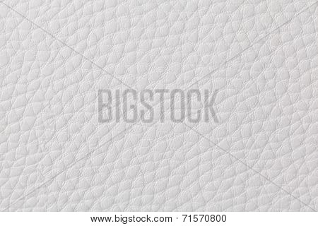 Background With Texture Of White Leather