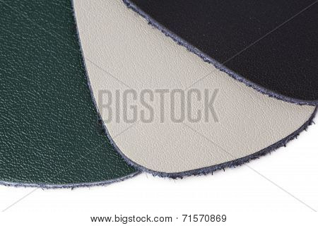 Samples Of Color Leather